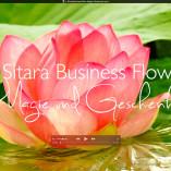 Sitara Business-Flow EInleitungsvideo Magie und Geschenk