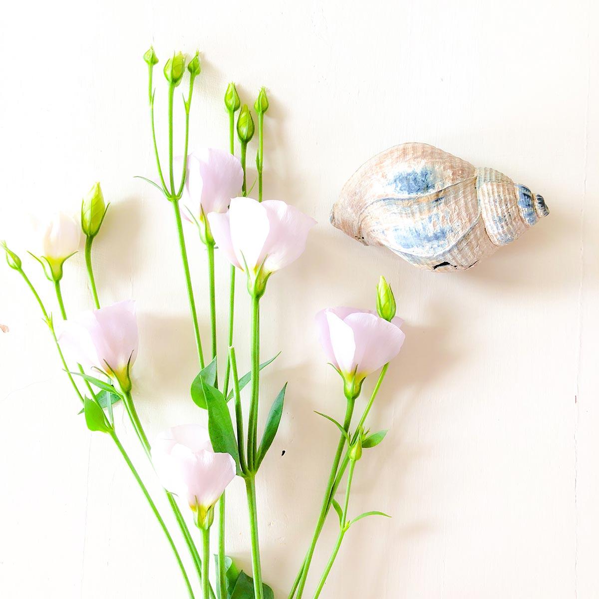 Bild Blog mit Blumen
