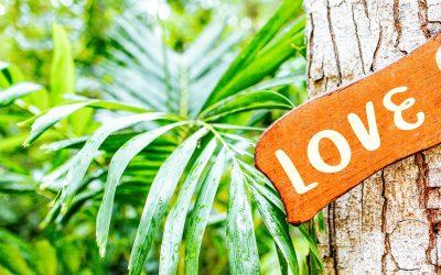 Wie das weise Huna-Wissen Dich glücklicher machen kann